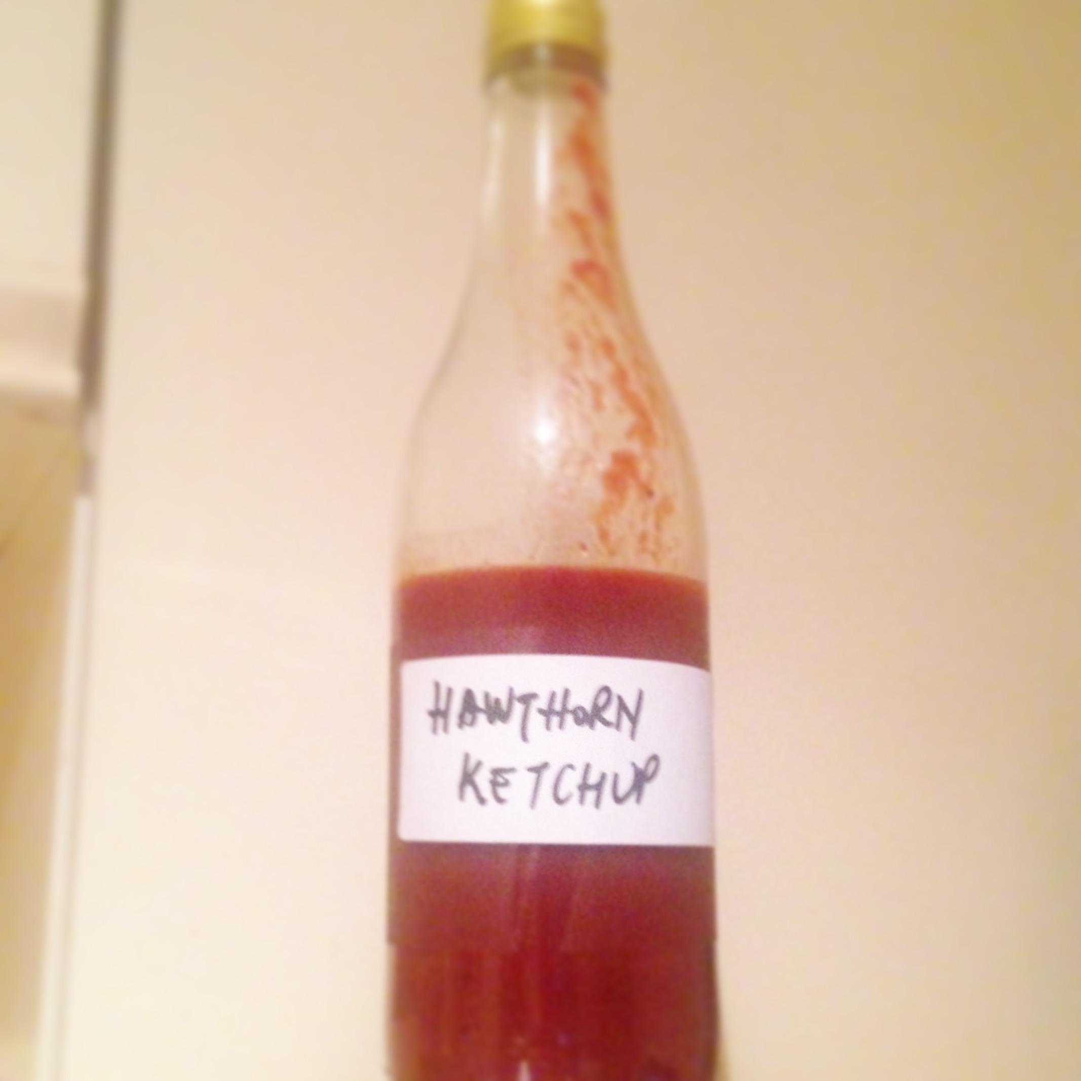 Hawthorn ketchup recipe Energya Ltd